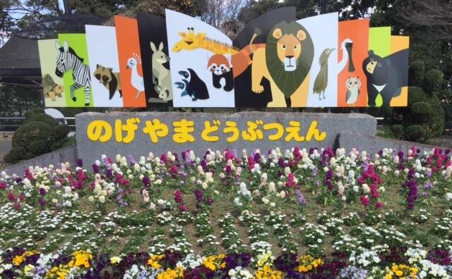 入園料無料の横浜の野毛山動物園に行ってきた!子どもの遊び場としてリピート確実。パパも楽しめる。