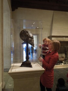 The SEE program examining a helmet at the National Gallery of Art as a way to learn about the strength of the head of a Cape Buffalo.