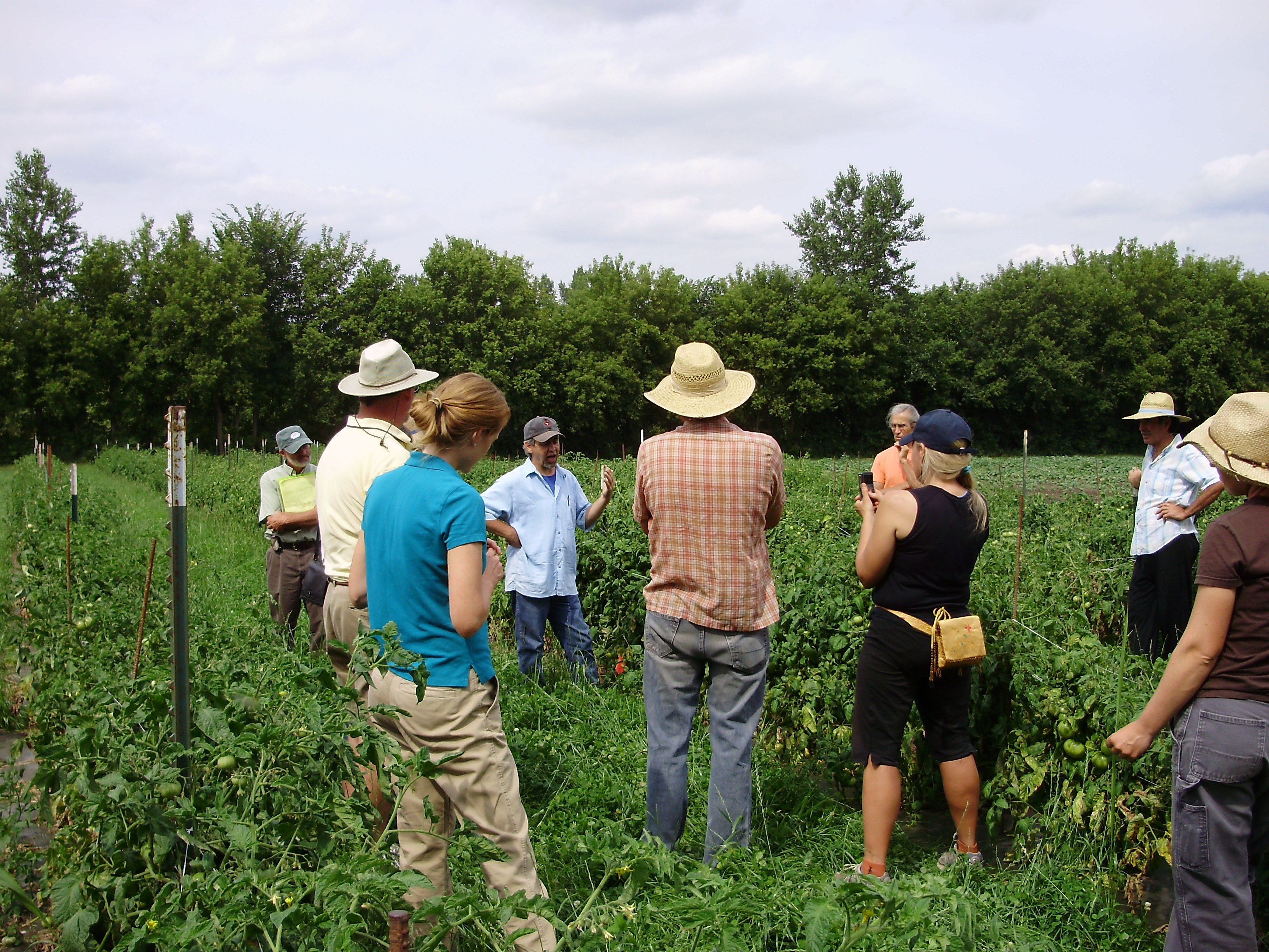 Fundamentals Of On Farm Plant Breeding Course