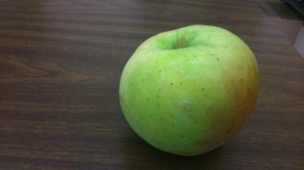 A Mutsu apple.