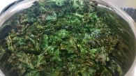 Kale chips ready for bellies.