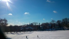 Beautiful snowy day in Withrow Park. January 30 2015