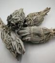 White-Sage-Smudge-Stick