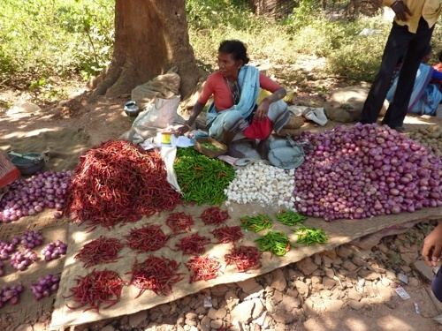 A woman selling chili peppers in a farmer market in Orissa
