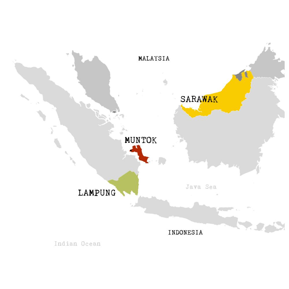 Lampong, sarawak et muntok pepper - Map