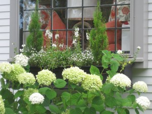 Window box in white