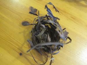 Cardinal nest of grapevine bark