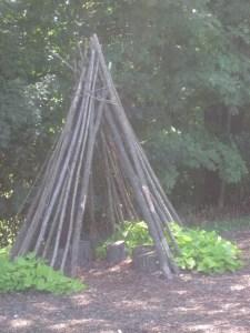Children's garden 6