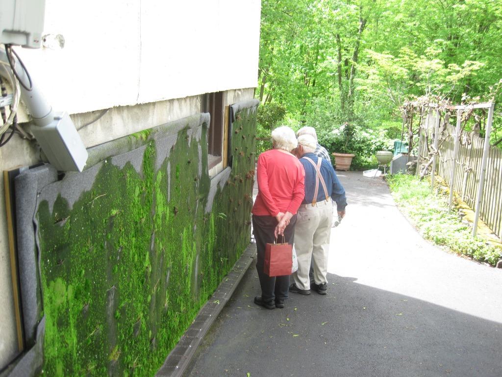 The godparents visit