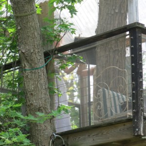 Can you see the violist in the tree house?