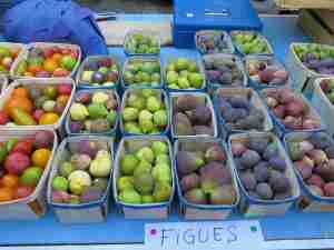 Figs, glorious figs!