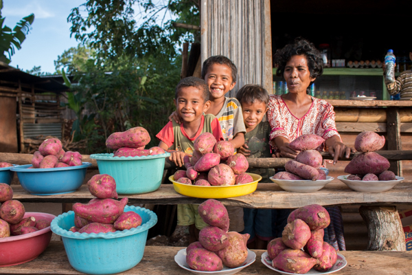 This farming family in Baucau districts sells sweet potatoes at a roadside stall © Yessy Octaviana/Seeds of Life