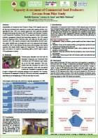 D4. Capacity assessment of CSPs