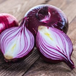 ONION - Red Creole - Allium cepa