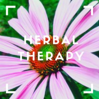 herbal therapy icon