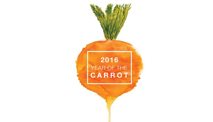 year-of-the-carrot
