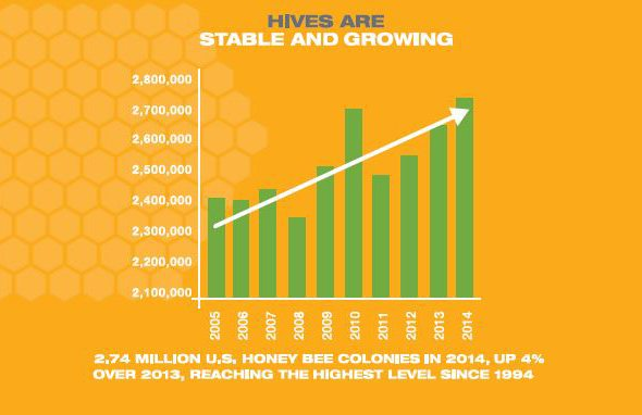 bee-health-colony-growth-chart