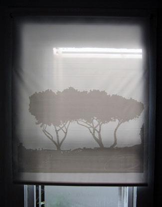 M_Borrell-rome-trees-3.jpg