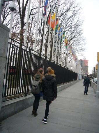 193 flags. New York 2016