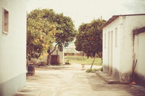 portugal-3683