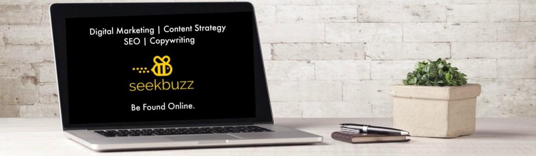 SeekBuzz SEO Content Marketing