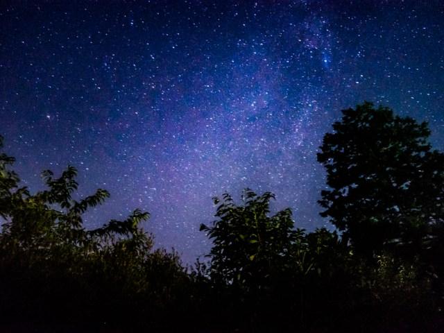 東京(奥多摩)でも数え切れないキラメク星が見れた!