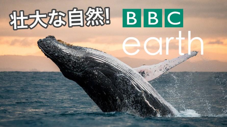 BBCの自然ドキュメンタリー番組『BBC Earth』シリーズが見応えたっぷり!