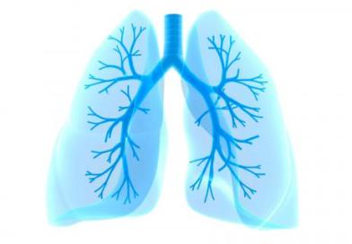 Lung cancer highly deadly, but avoidable