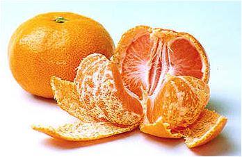 オレンジの皮入浴剤