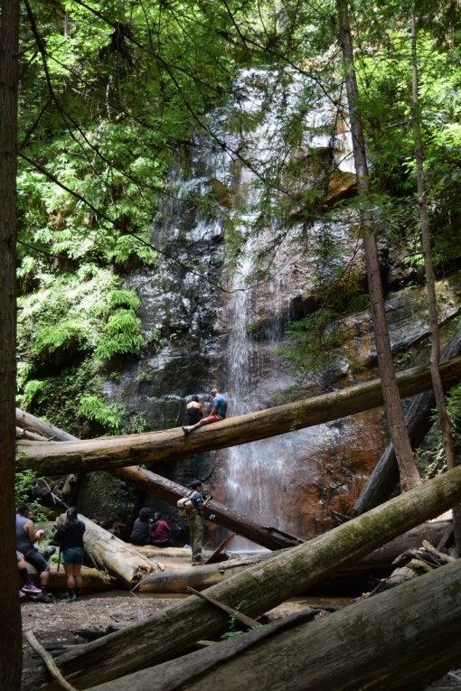 Berry Creek Falls Middle