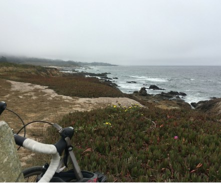 Pescadero Lunch View