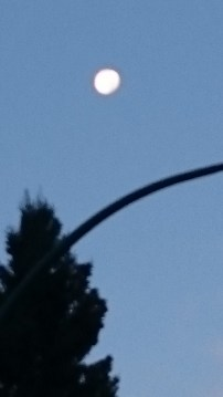 A bright Mr. Moon saying good morning on my way to work