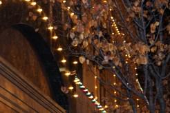 The Plaza lighting