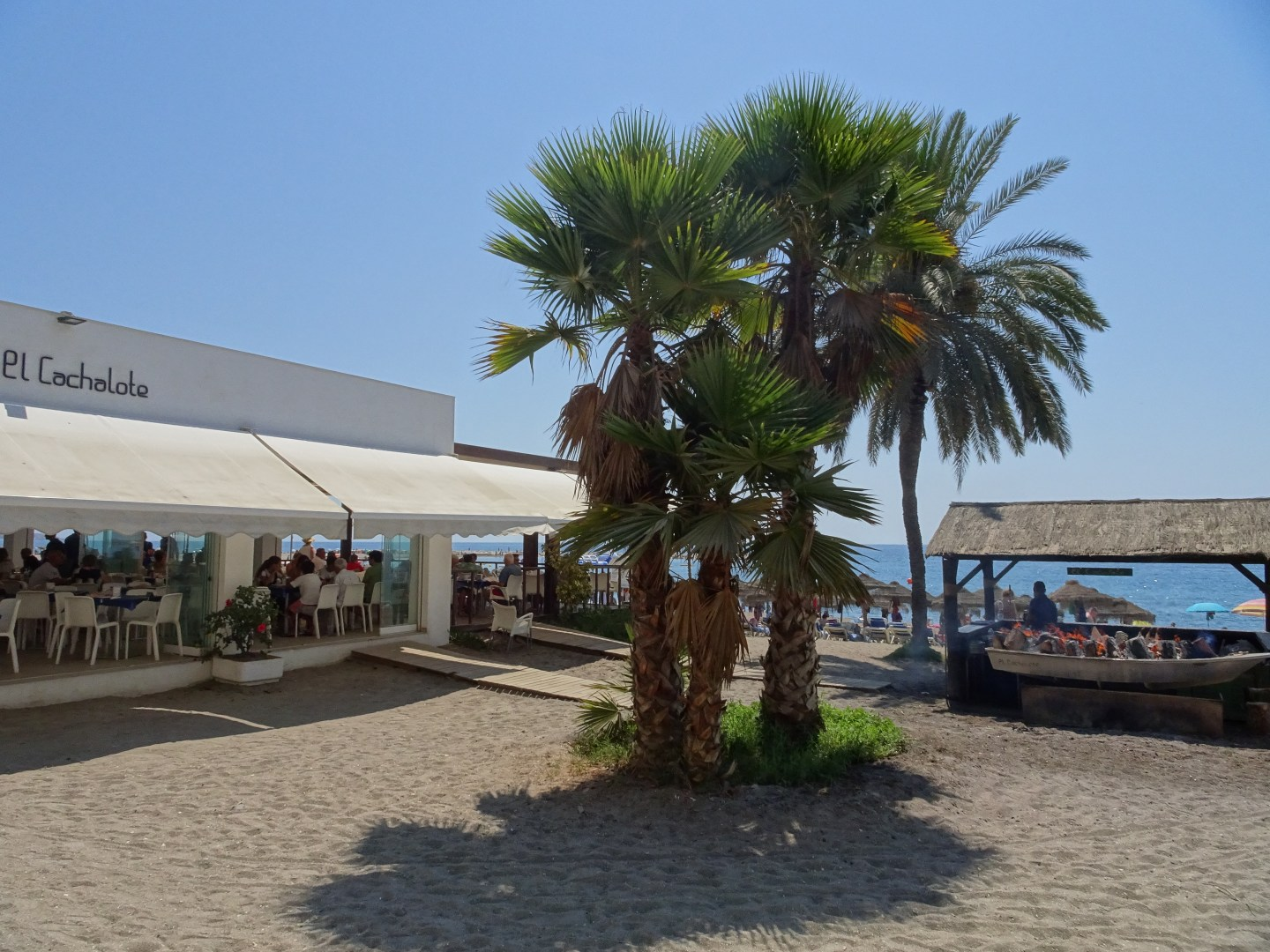 The perfect beachside lunch spot in Malaga