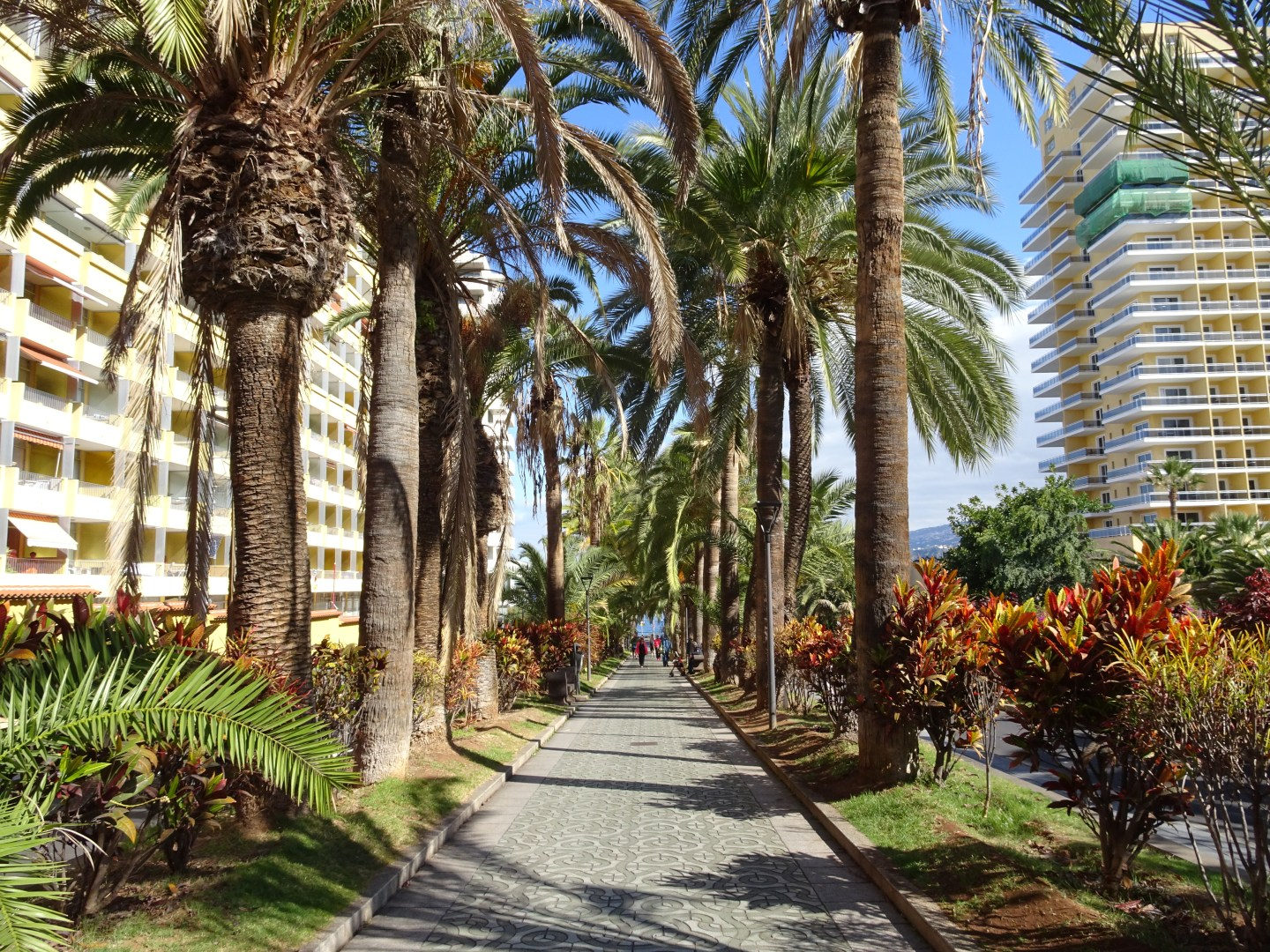Holiday in North Tenerife