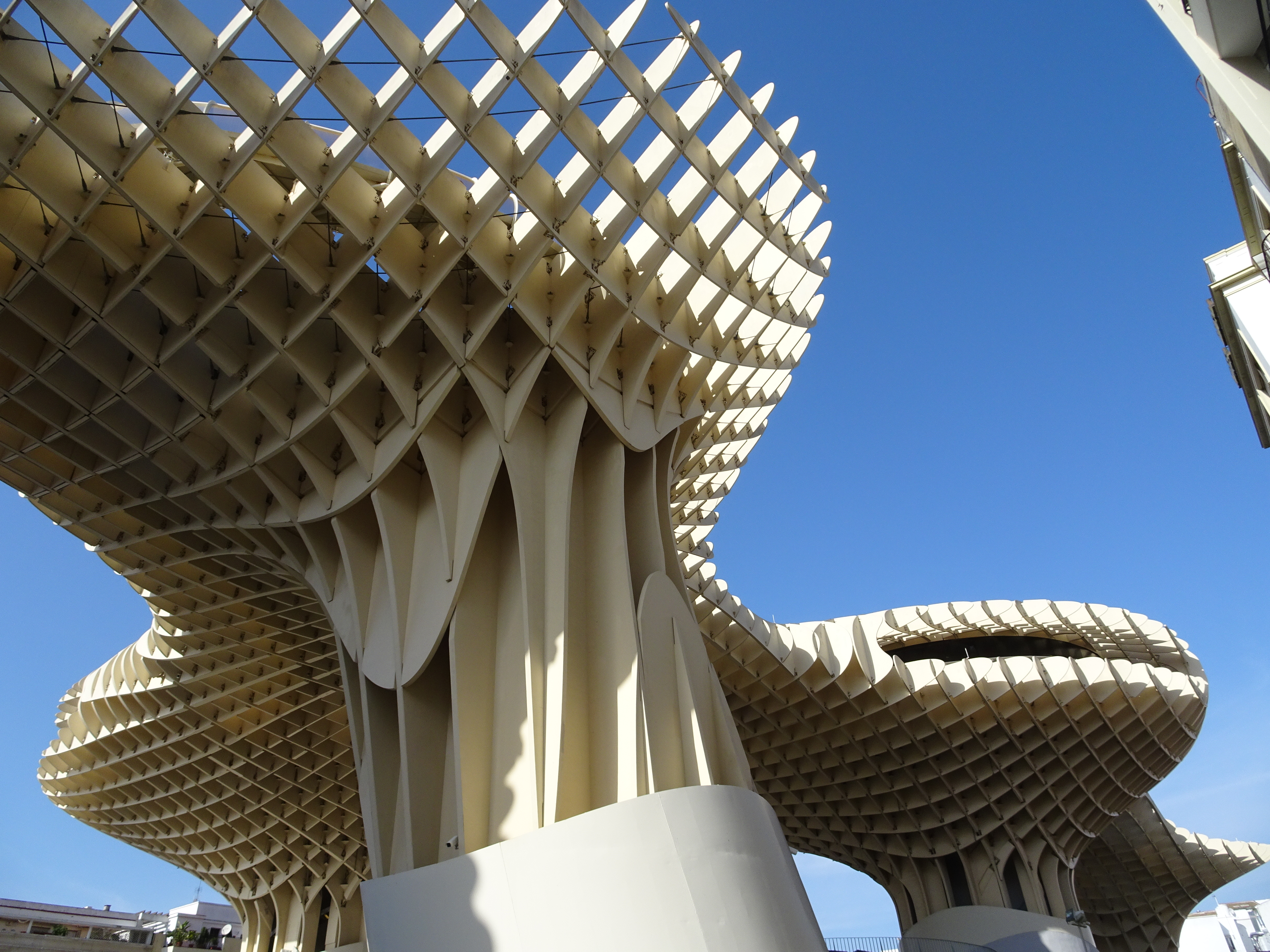 See the Metropol Parasol in Seville