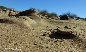 Agua Fria River sandy bed