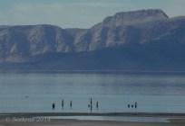 Black Rock Resort pier pilings 13