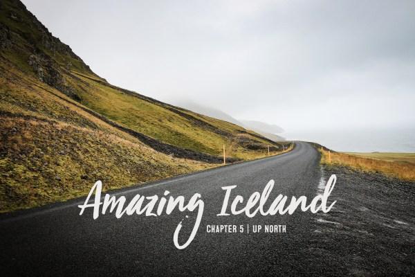 Island Reisebericht | seelenschmeichelei.de