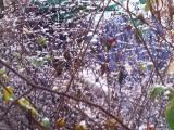 04 - Samstag, endlich Schnee