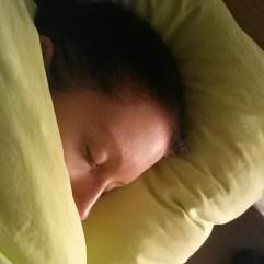 Eben schon vorm Fernseher eingeschlafen ... schlaft gut, meine Lieben! Spätestens bis zu Ausgabe # 17 des #pmdd ♥ #schlafenwieeinstein #gutenacht #schöneträume #sleepwell #scheewors #PmdD16