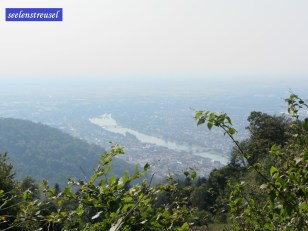 Blick vom Königsstuhl auf Heidelberg