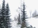 2013-02-23_28