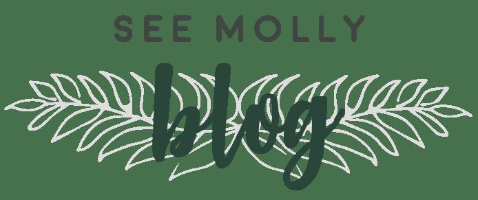 See Molly Blog