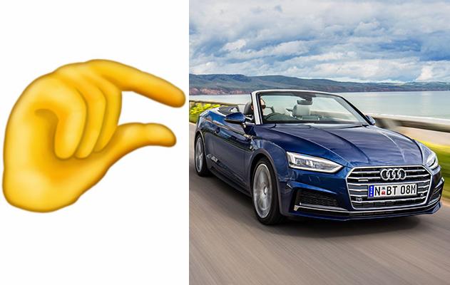 Audi Small Penis