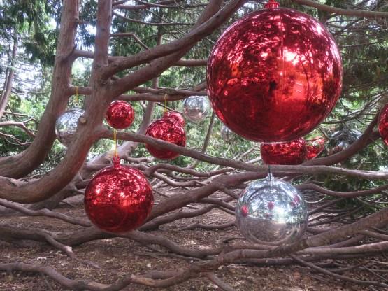Christmasdecoration at Botanic Garden Christchurch