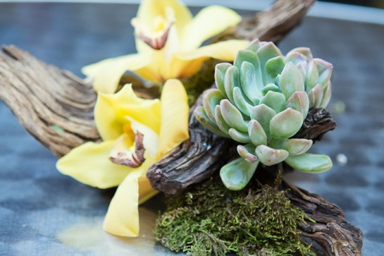 Jeffrey Jucewicz combined succulents and orchids on a piece of driftwood for this RUSTIC CENTERPIECE.