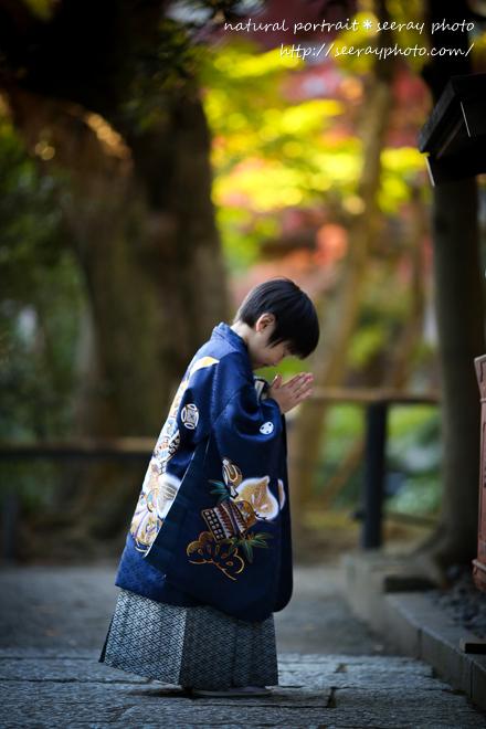 鎌倉鶴岡八幡宮 七五三_L2641