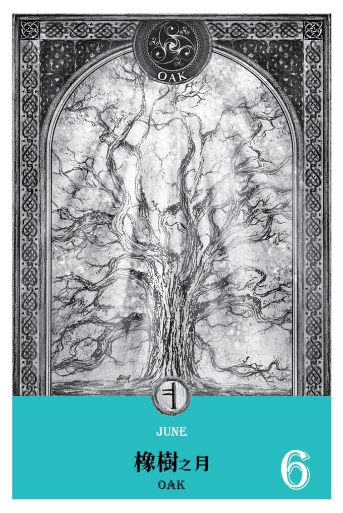 2016魔法手帳-橡樹