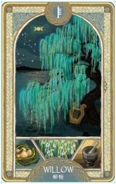 歐甘樹卡 (4) 柳樹